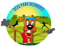 DSTV-DOG-PARK-MOMENTS-ICON