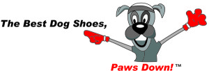Design - the best dogshoes, paws down!(1)